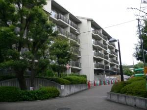 160404mokuzai1